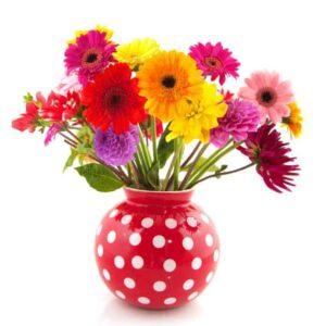 Dahlia and Gerber flowers