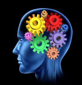 Hjernen arbejder når du holder pause