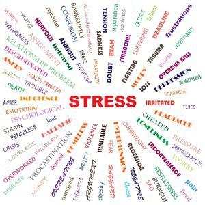 Nærvær er godt stressberedskab