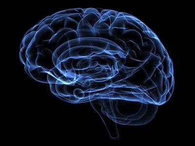 flow og hjernen