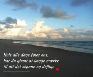 Gode citater om at huske og se det smukke i livet