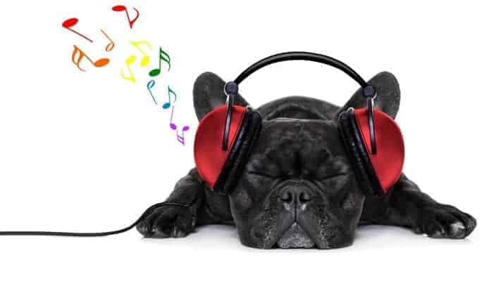 søvn og afslapningsmusik